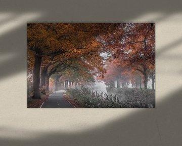 Apeldoorns kanaal van Niels Barto
