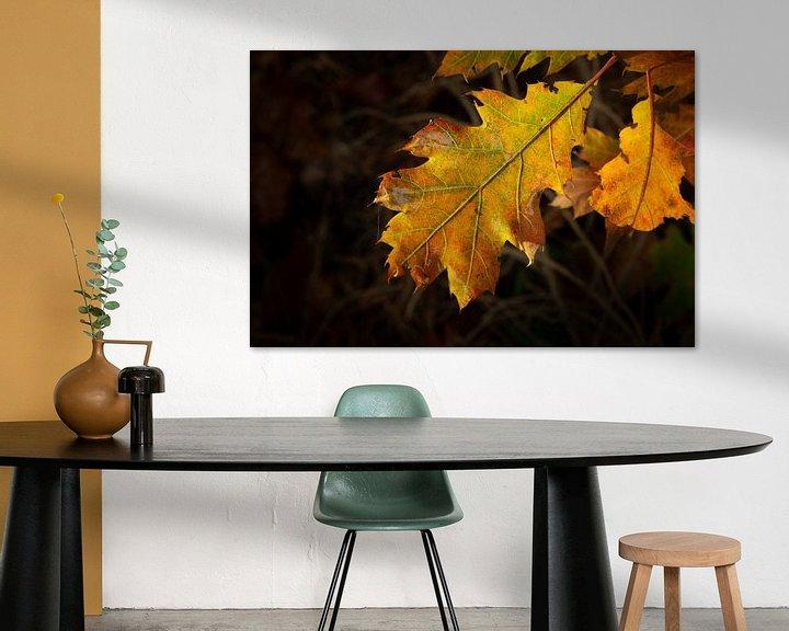Sfeerimpressie: herfstblad close- up met duidelijke aderen van Eline Oostingh