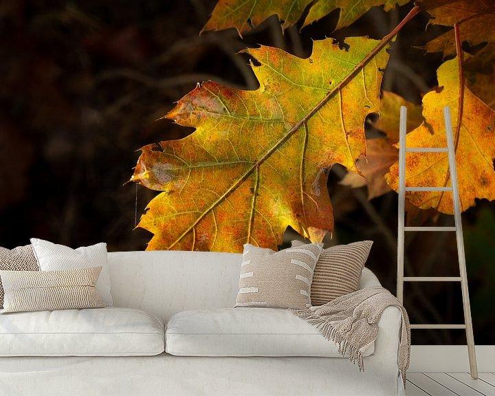 Sfeerimpressie behang: herfstblad close- up met duidelijke aderen van Eline Oostingh