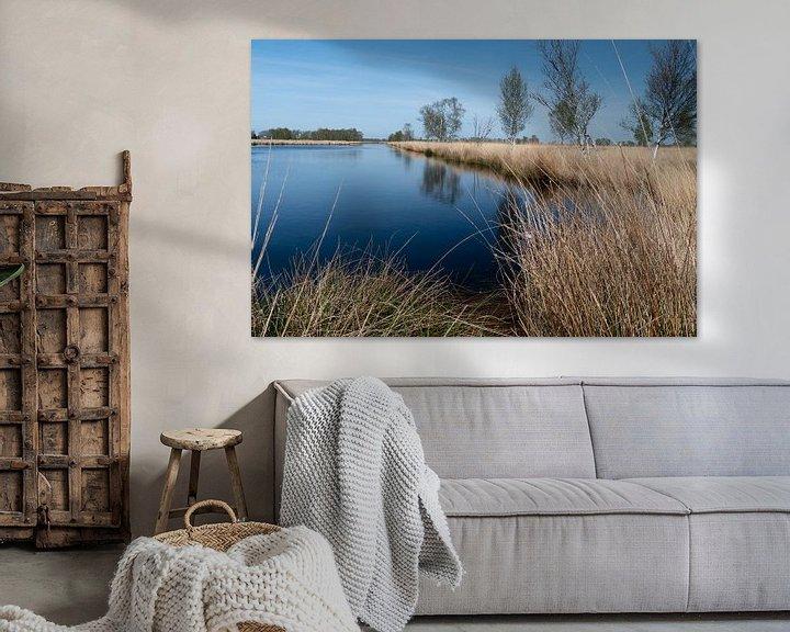 Sfeerimpressie: water, droog gras en een bomen rij in het bargerveen van Eline Oostingh