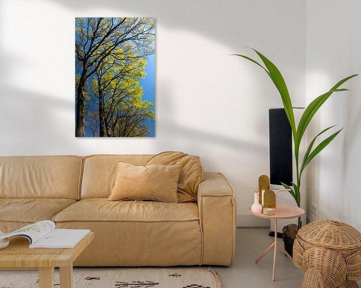 Sfeerimpressie: groene bomen tegen een blauwe lucht in de lente van Eline Oostingh