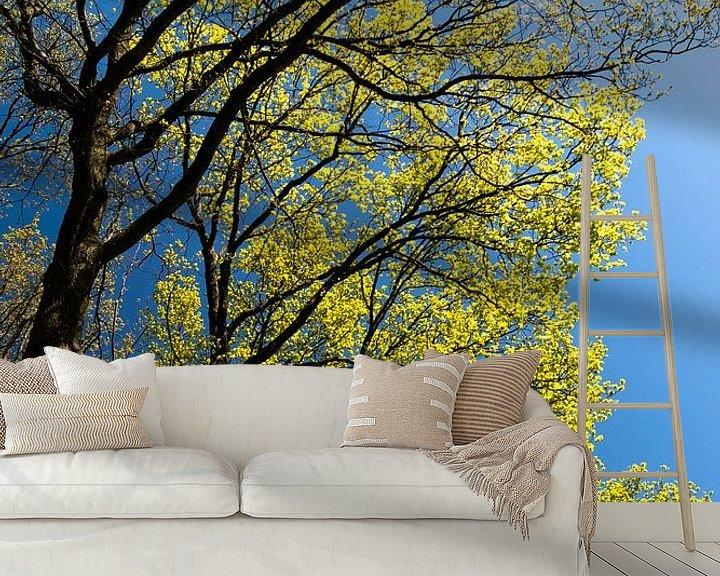 Sfeerimpressie behang: groene bomen tegen een blauwe lucht in de lente van Eline Oostingh
