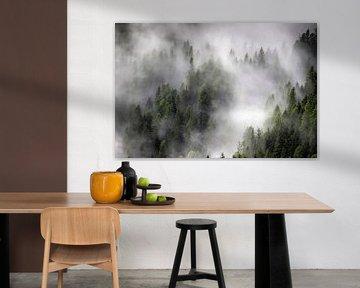 Nebel von Anthony Damen