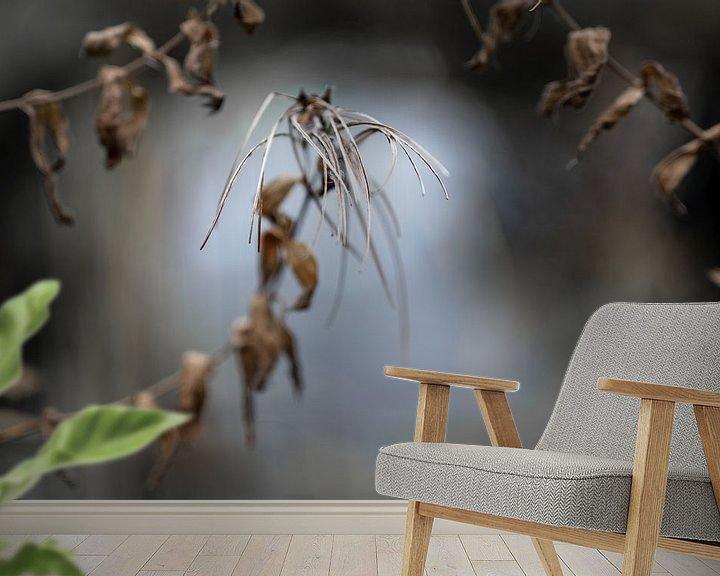 Impression: Capsules de graines d'épilobe (Epilobium) sur un fond de nature floue, concept de wabi sabi, symbole sur Maren Winter