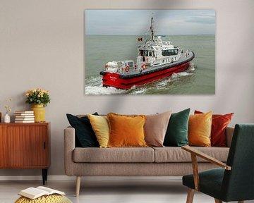 Loodsboot Wulpen van MSP Canvas