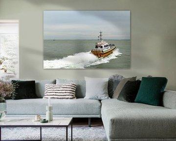 Loodsboot Lucida van MSP Canvas
