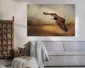 Amerikaanse Zeearend Boven Landschap Schilderij van Diana van Tankeren