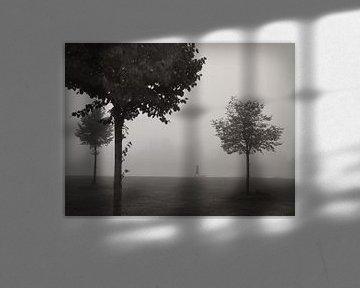 Walking In Fog von Lena Weisbek