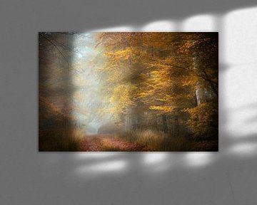 Quiet Time van Kees van Dongen