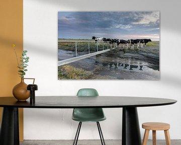 Kühe auf der Salzwiese - Natürliches Wattenmeer von Anja Brouwer Fotografie