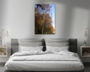 Reflectie van boom in water van Bobsphotography