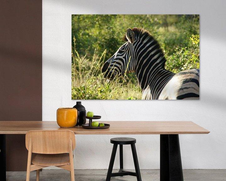 Beispiel: Zebra im größeren Kruger-Park in Südafrika von Johnno de Jong