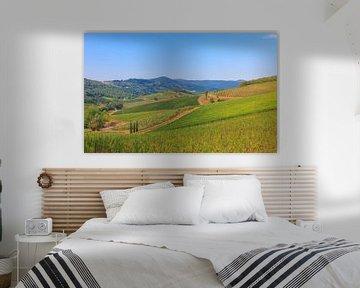 Het toscaanse landschap van Ronald Derksen