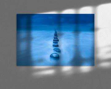 Blauwe paaltjes - Natuurlijk Ameland van Anja Brouwer Fotografie