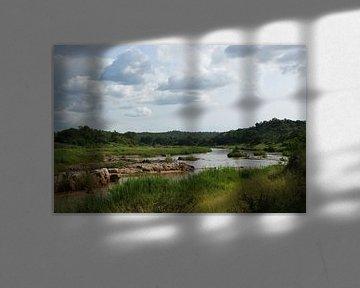 Rivier in het Balule national park in Zuid-Afrika van Johnno de Jong