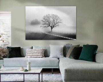 Oude eik in winterse mist van Yvonne Albe