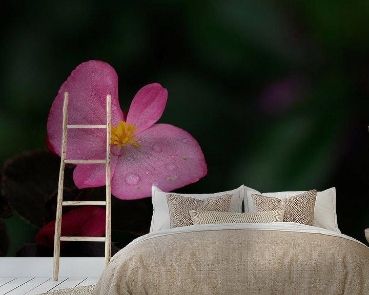 Beispiel fototapete: Rosa Herbst von Wendy Drent