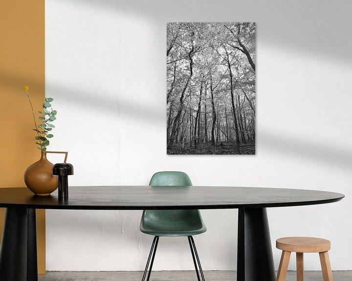 Sfeerimpressie: Look up in zwart wit van Christa Stroo fotografie