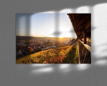 Blick von der Burg über Esslingen am Neckar von Werner Dieterich
