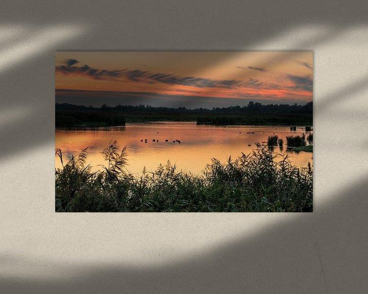 Sfeerimpressie: Zonsondergang Onlanden van Marga Vroom