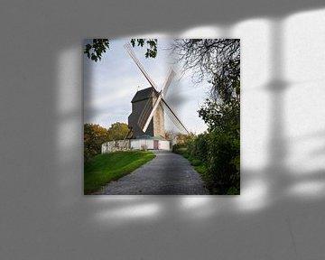 Windmühlen von Brügge, Flandern, Belgien von Alexander Ludwig