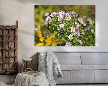 Blumen draußen von Bas Berk