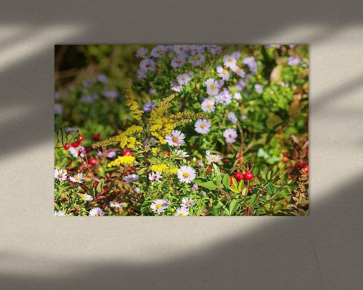 Beispiel: Blumen an einem heißen Sommertag von Bas Berk