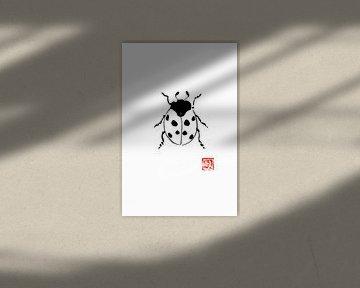 lieveheersbeestje van philippe imbert
