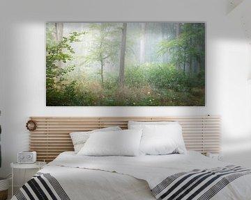 Idyllischer grüner Wald von Tobias Luxberg