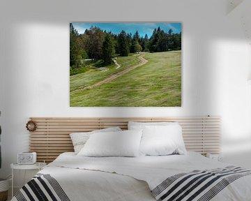glijbaan in de bergen vogezen frankrijk van Delphine Kesteloot