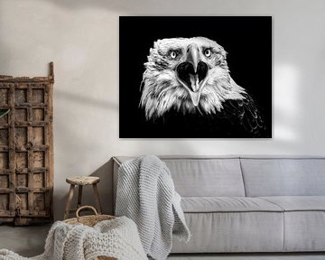 Der amerikanische Adler II von Vincent Willems