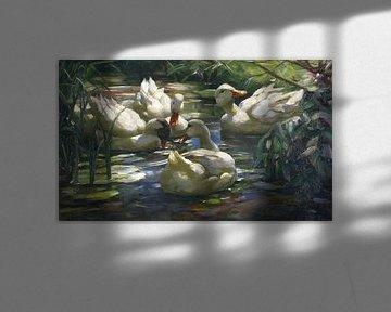 Enten auf dem Waldweiher, ALEXANDER KOESTER, Ca. 1909-1913 von Atelier Liesjes