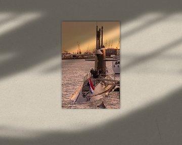 Onderzeeboot van Anne Reitsma