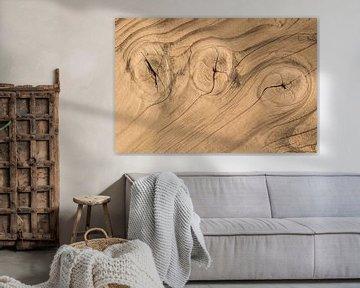 Holzbohle mit Ästen und Jahresringen aus Naturholz von Peter Buijsman
