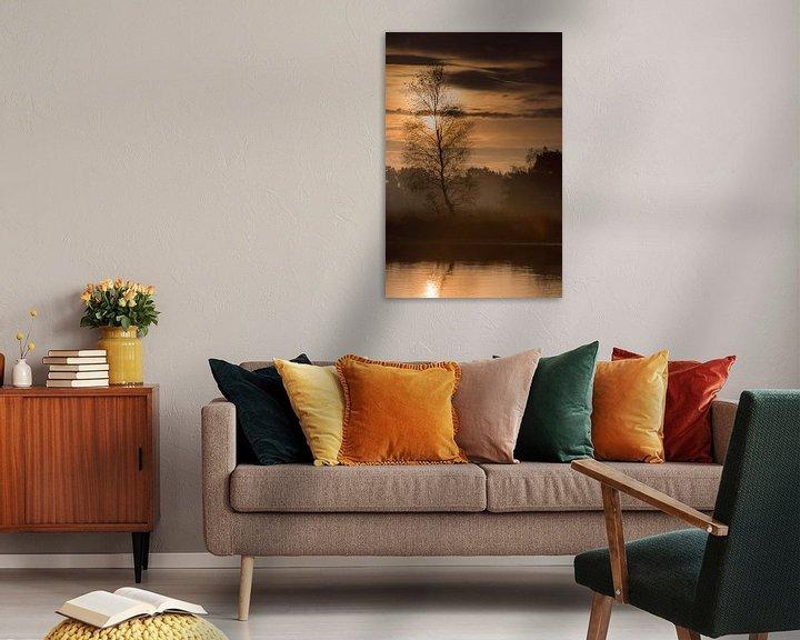 Beispiel: Einsame Birke mit Sonnenaufgang von Bjorn Dockx