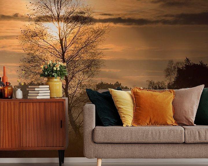 Beispiel fototapete: Einsame Birke mit Sonnenaufgang von Bjorn Dockx