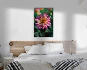 Bunte Blume 2 von Alwin van Wijngaarden