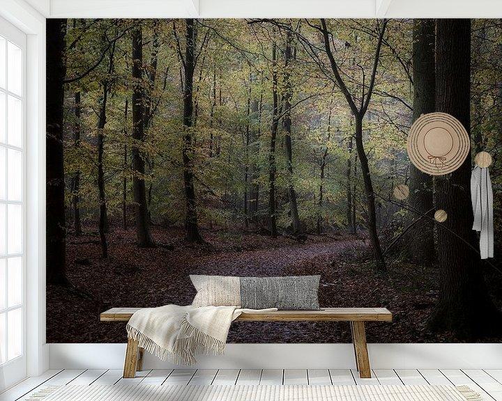 Impression: la forêt d'automne sur Koen Ceusters