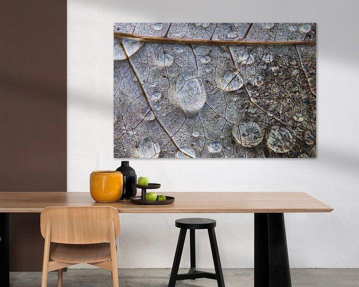 Sfeerimpressie: Regendruppels op bladnerven. van Wil Leurs