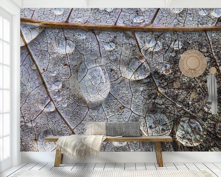 Sfeerimpressie behang: Regendruppels op bladnerven. van Wil Leurs