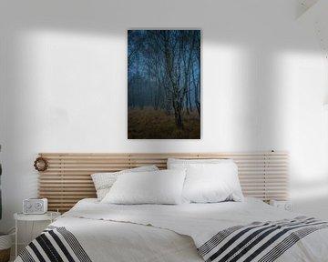Spookachtig berkenbos in de mist van Miranda Rijnen Fotografie