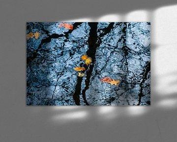 Drijvende herfstbladeren; reflecterende bomen van Bep van Pelt- Verkuil