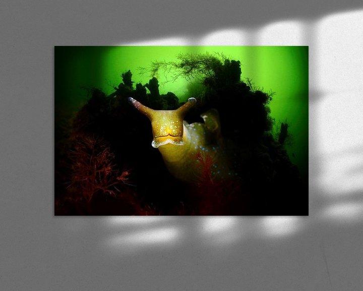 Sfeerimpressie: Groene wierslak in het Grevelingenmeer van Filip Staes