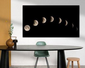 Lunar eclipse von Vincent Willems