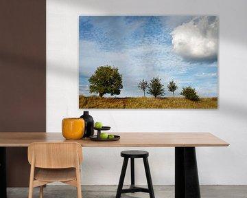 Vijf bomen van Ralf Lehmann