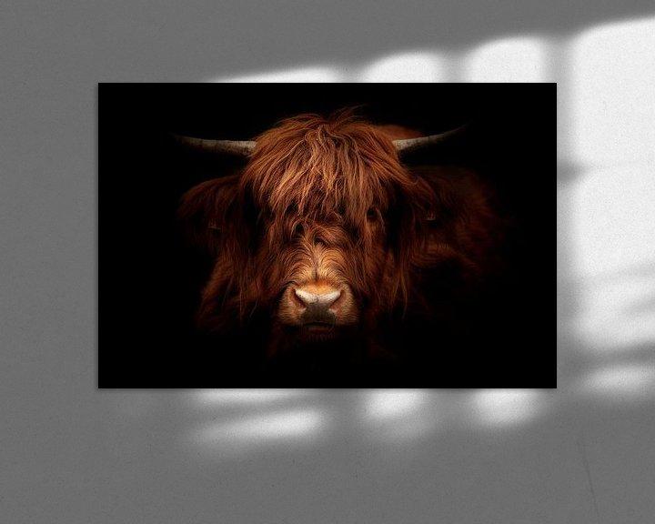 Sfeerimpressie: bad hair day van hanny bosveld