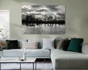 Kein Silberstreif ohne dunkle Wolken von Gerry van Roosmalen