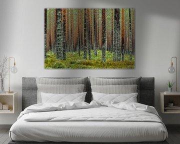 Muur van bomen van Gerry van Roosmalen