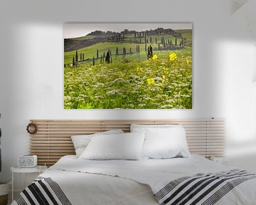 Zypressenallee, Toskana, Italien von Markus Lange