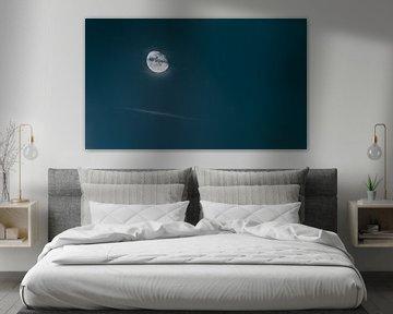 Le côté lumineux de la lune - La pleine lune pour les créatures de la nuit sur Jakob Baranowski - Off World Jack